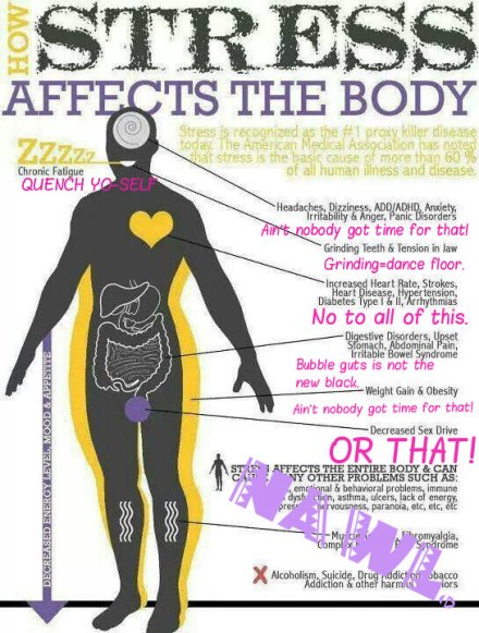 stress affects body